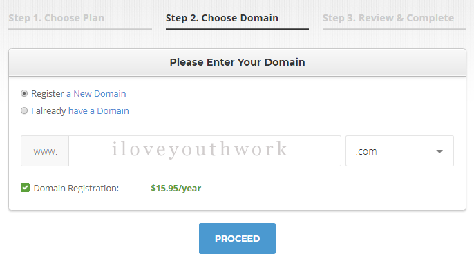 youthworknews domain name input